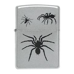 20124 Spider