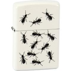 26435 Ants